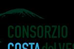 logo-web-horizontal-150x133